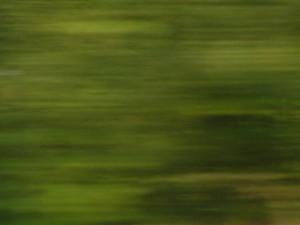 blur13