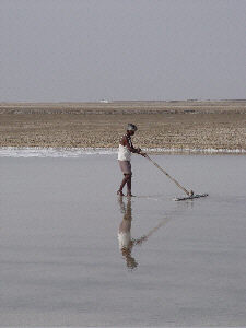 Salt Flats at Little Rann of Kutch