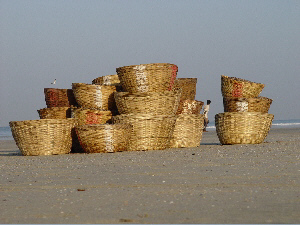 Fish Baskets at Colva